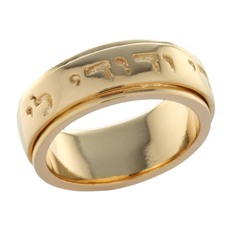 Anel giratório Ani le Dodi banhado a ouro - Tamanho 28