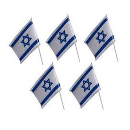Bandeira de Israel pequena tecido