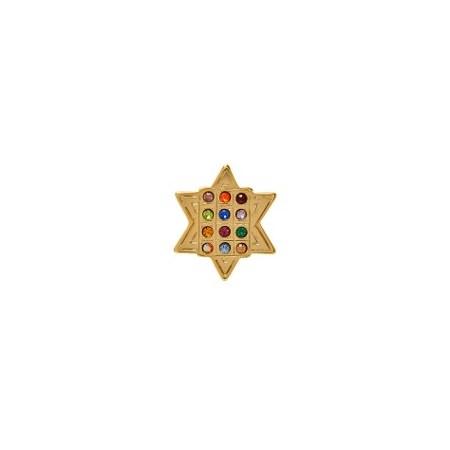 Botton Estrela com 12 tribos
